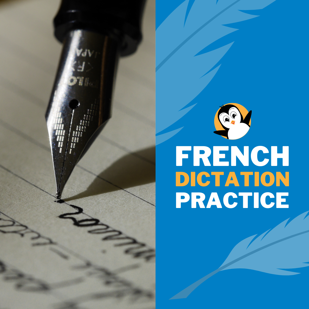 French Dictation Poster2